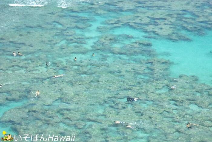 ハナウマ湾の展望台から見える景色5サンゴ礁 リーフ