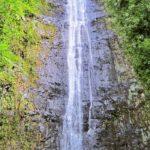 マノアの滝画像2