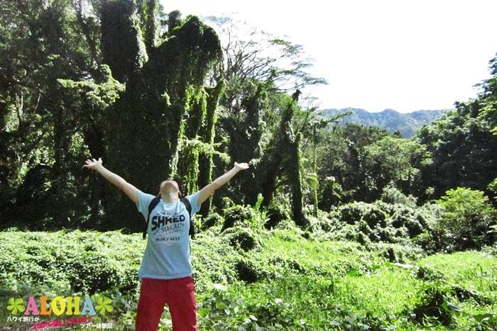 マノアの滝でエネルギーチャージ