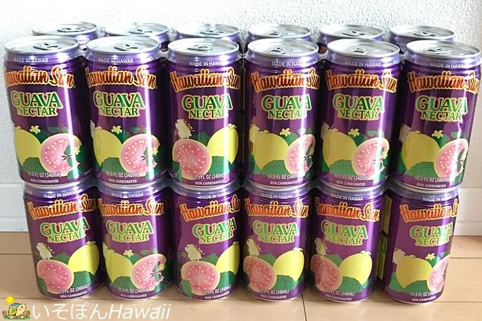 ハワイアンサンのグァバネクター24缶セット2