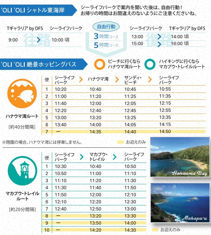 ❛OLI❛OLIシャトル東海岸&絶景ホッピングバス