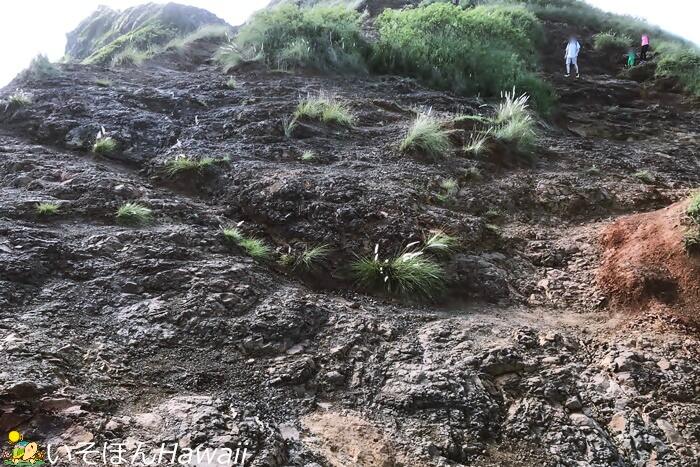 カイルアピルボックス岩場